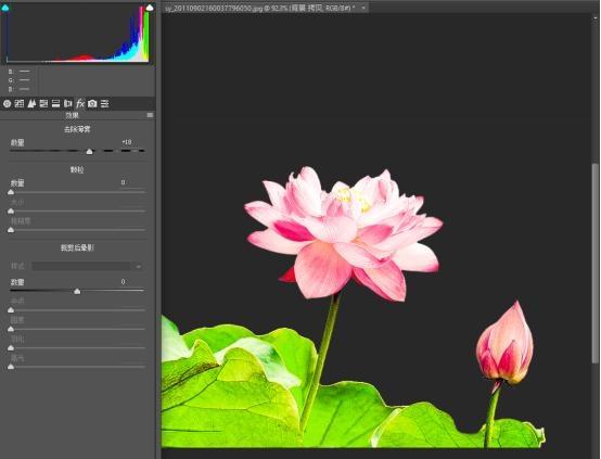 用ps把效果制作的中国水墨拍摄成荷花风的数码广告设计照片多点图片