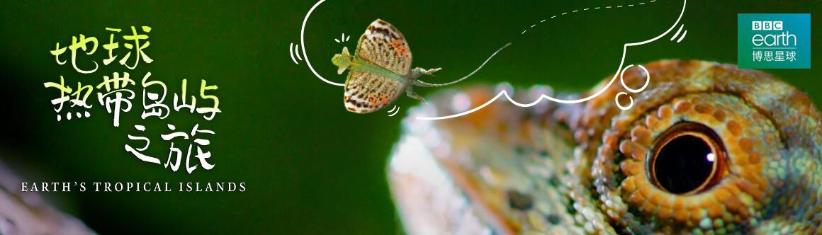 地球熱帶島嶼之旅:會飛的蜥蜴
