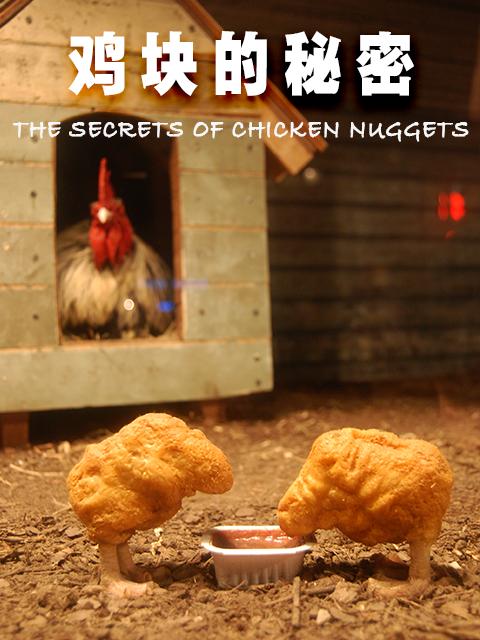 鸡块的秘密第16集剧情