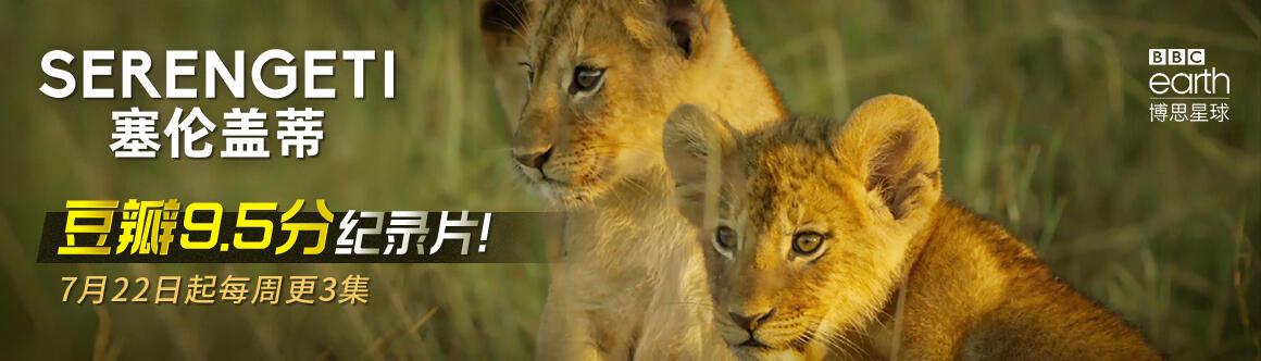塞倫蓋蒂:非洲動物家族傳奇