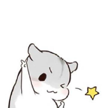 绝望の小仓鼠