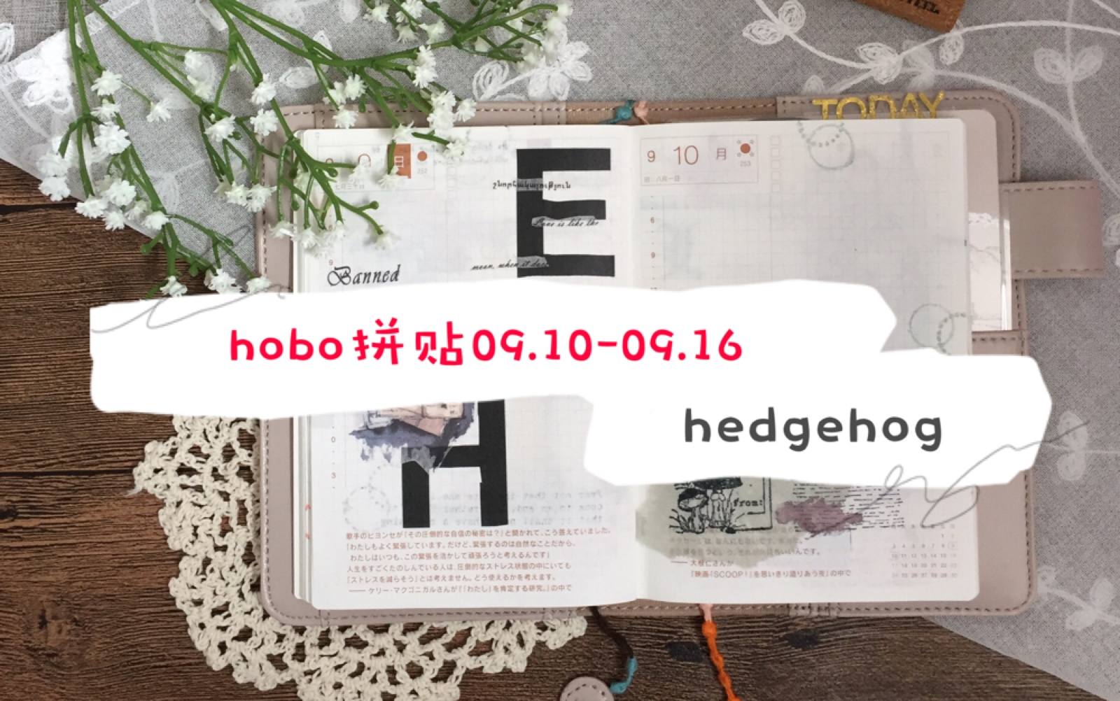 【hodgehog】hobo拼贴系列 vol.3