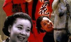 皇嫂田桂花全集_皇嫂田桂花:第1集_电视剧_bilibili_哔哩哔哩