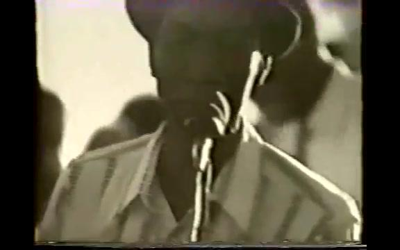 hound dog taylor-Shake your moneymaker