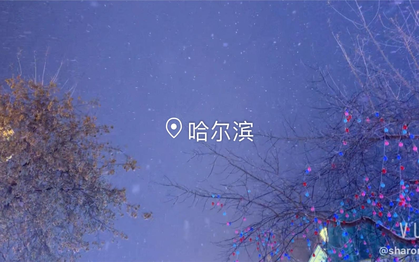 哈尔滨#从南到北的出差