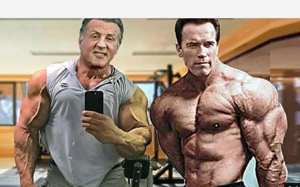史泰龙和施瓦辛格_肌肉男能有多猛?史泰龙和州长71岁的训练影片【ZHY】_哔哩哔哩 ...