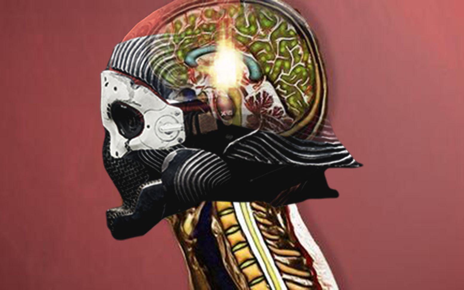 【命运2】一名噶点打错了神谕,这是他大脑发生的变化