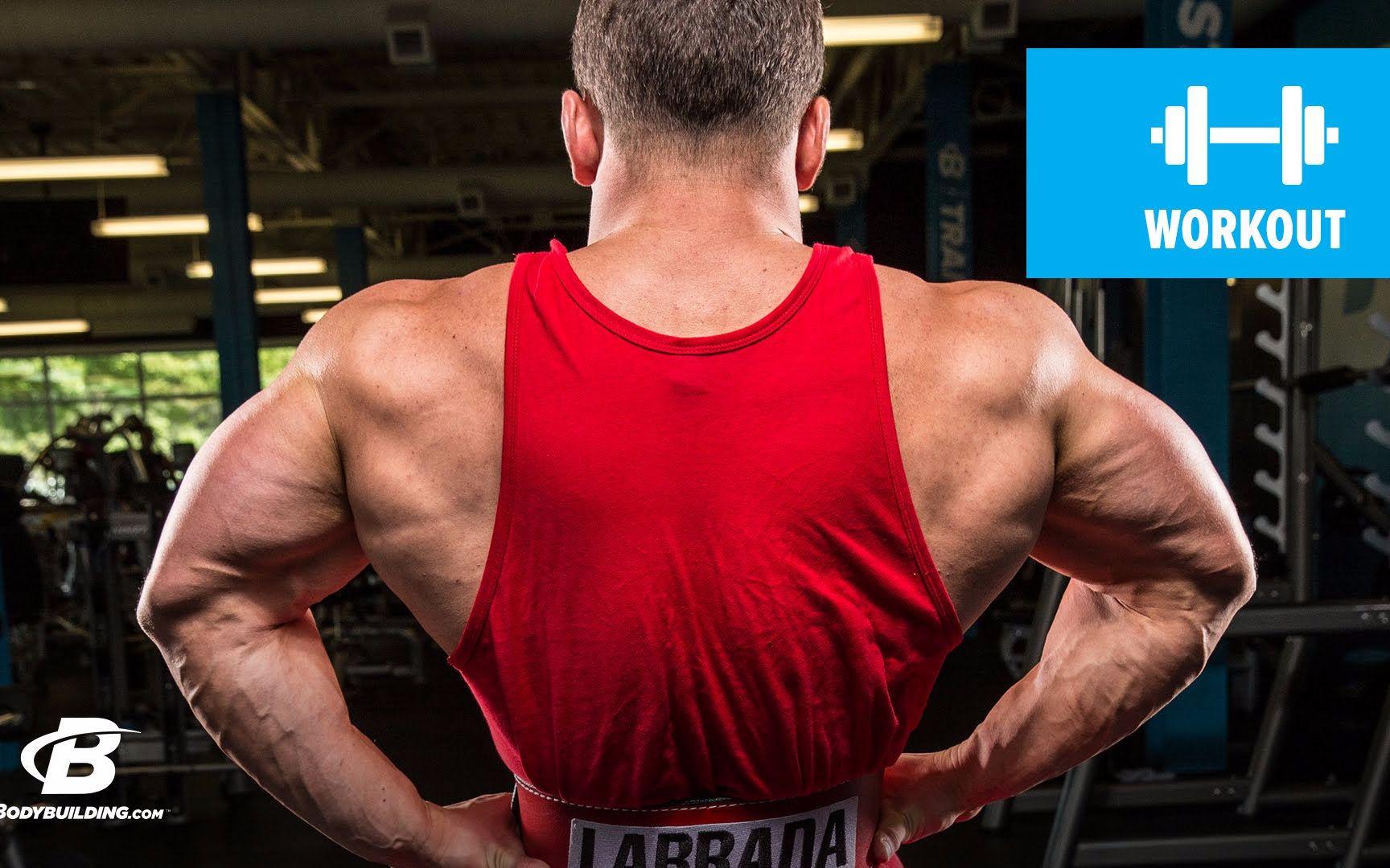 健美运动员拉布拉达的背部训练日-健身健美教程系列