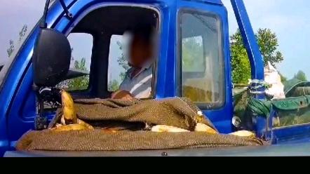 窄路行车安全:没安全带的后果,触目惊心!