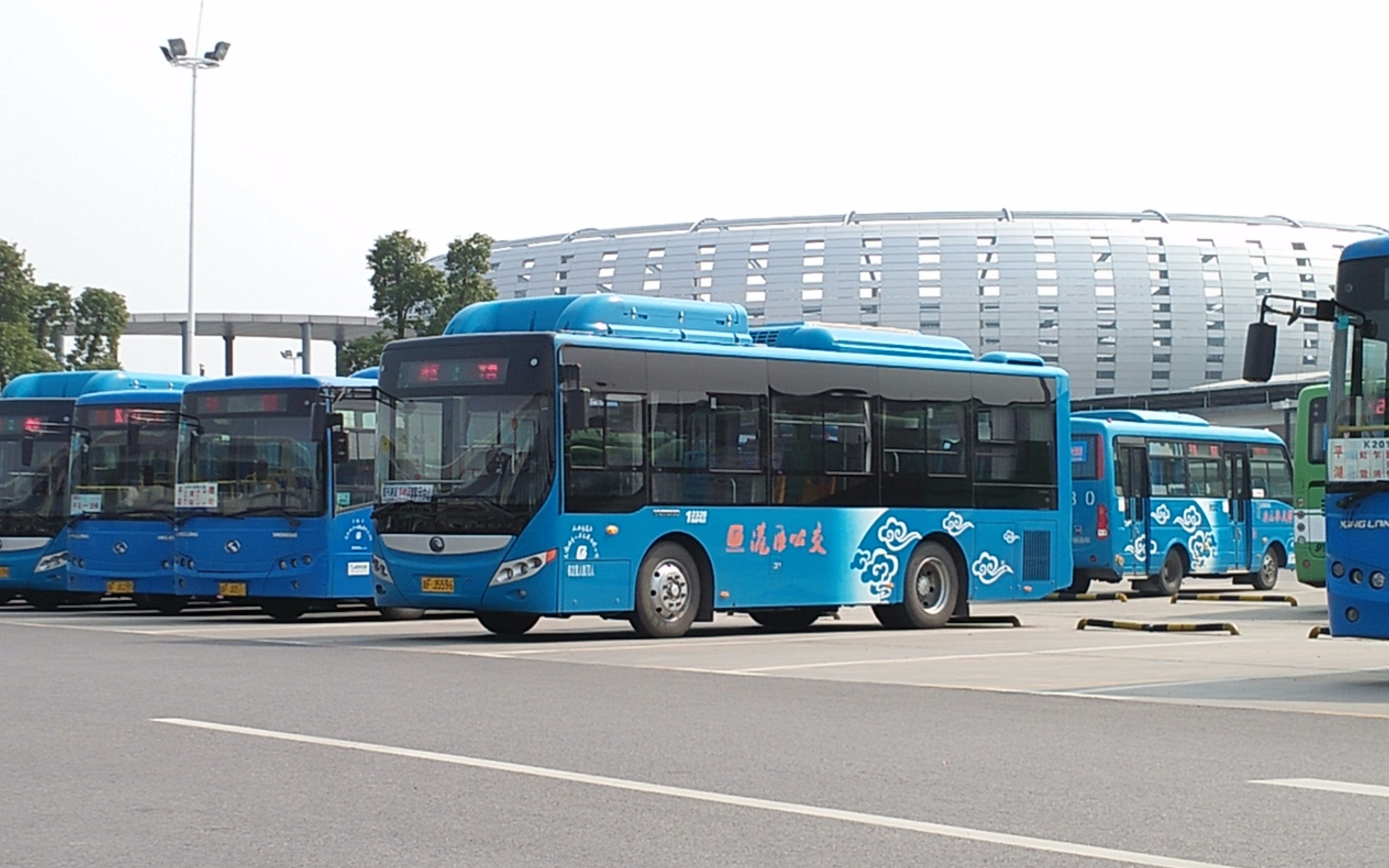 石狮市狮标_泉州市公交车802 2014年-泉州802路公交车要在哪里坐?