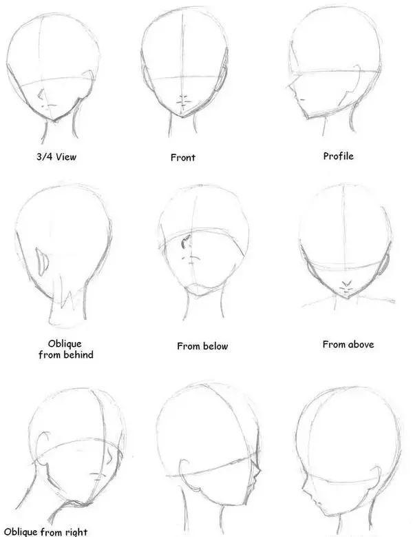 少妇脸型性交强弱_③ 日漫人物其他各种角度的脸型比例画法图