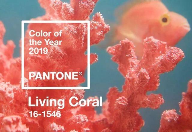 从爱马仕橙到OPPO珊瑚橙 时尚界是有多宠这个颜色