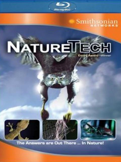 自然科技–工程师如何激励性质的顶尖的设计