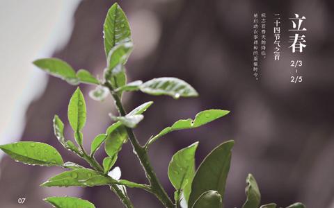 四季中国:第1话 立春