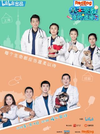小主安康-宠物医院2